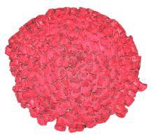 Букет 301 роза